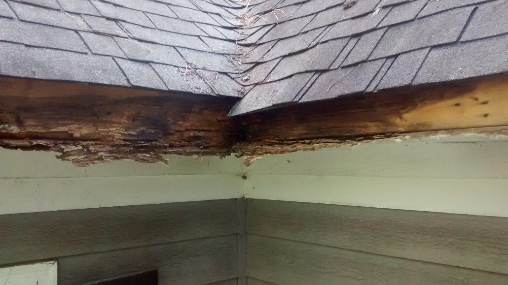 1 Rated Gutter Cover In Creedmoor Nc Leavesout